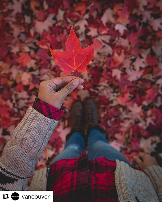 #Repost @vancouver ・・・ It's officially the first day of Fall! 🍁 Which is your favourite season?  #Vancouver Photo: @sonikaarora604