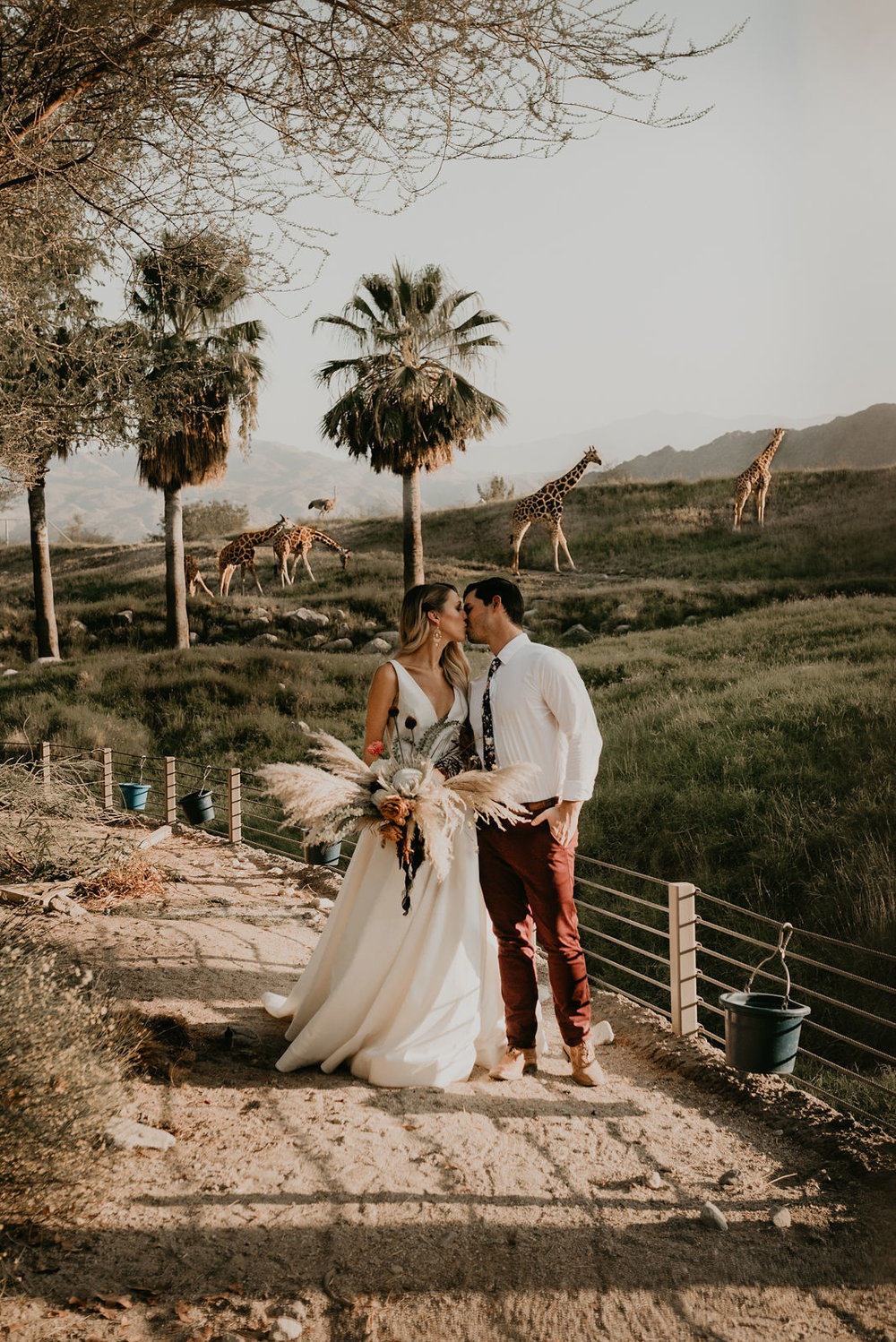 Chelsie + Chris - The Living Desert