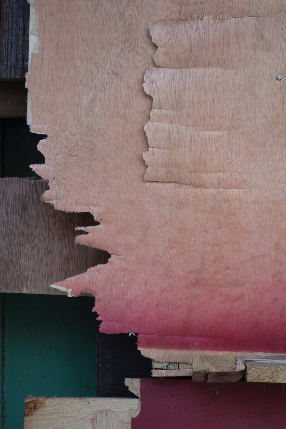 Wood Abstract.jpg