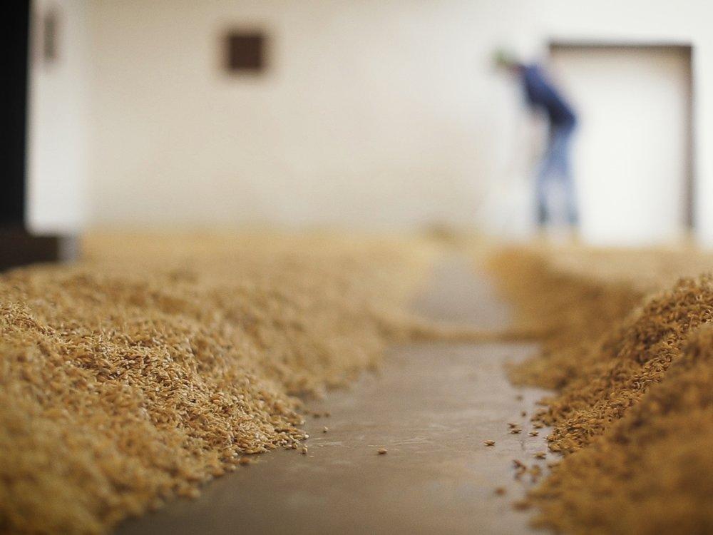 purchased 41,265+ lbs - of Mid Atlantic grains