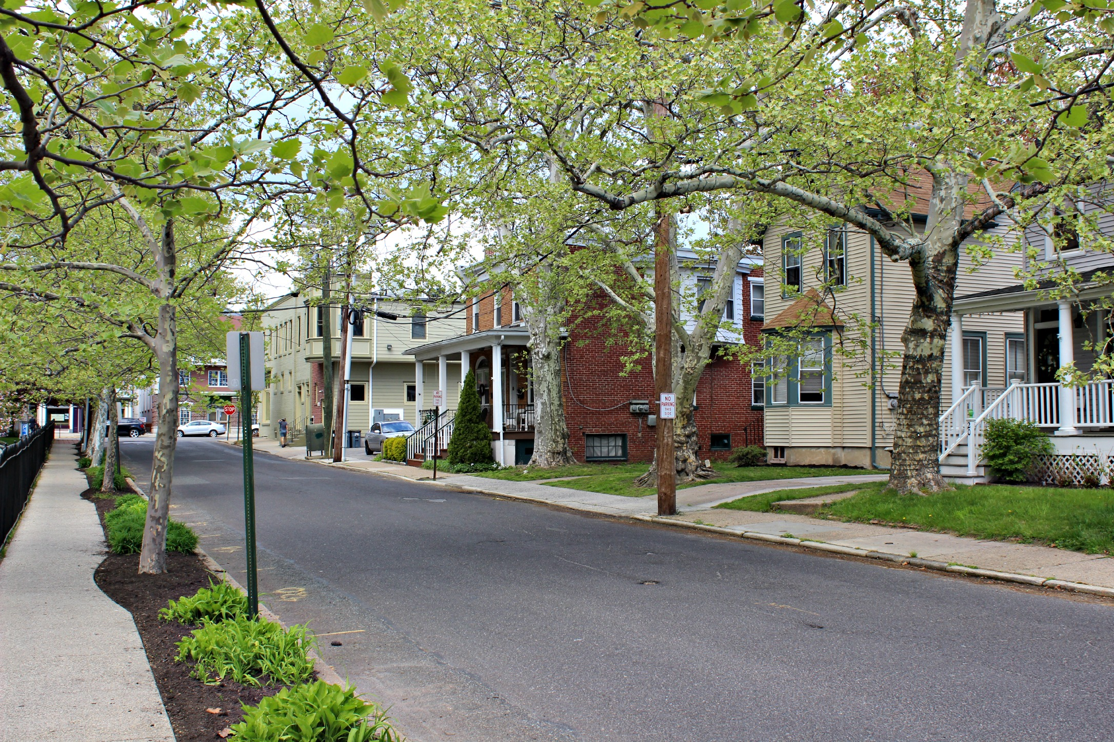 Small Town NJ: Collingswood