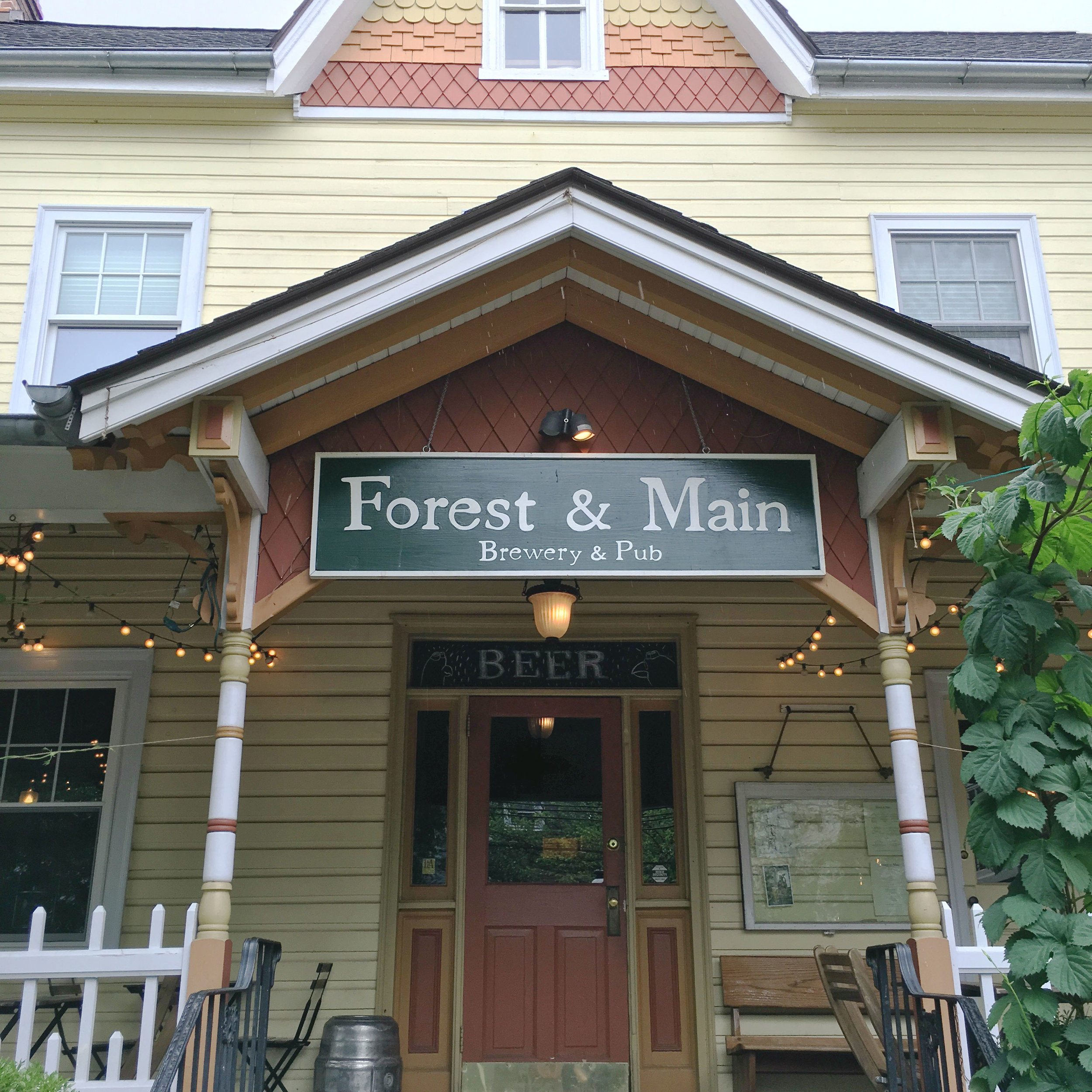 A Visit to Forest & Main Brewery