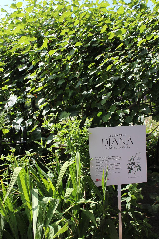 diana-memorial-garden