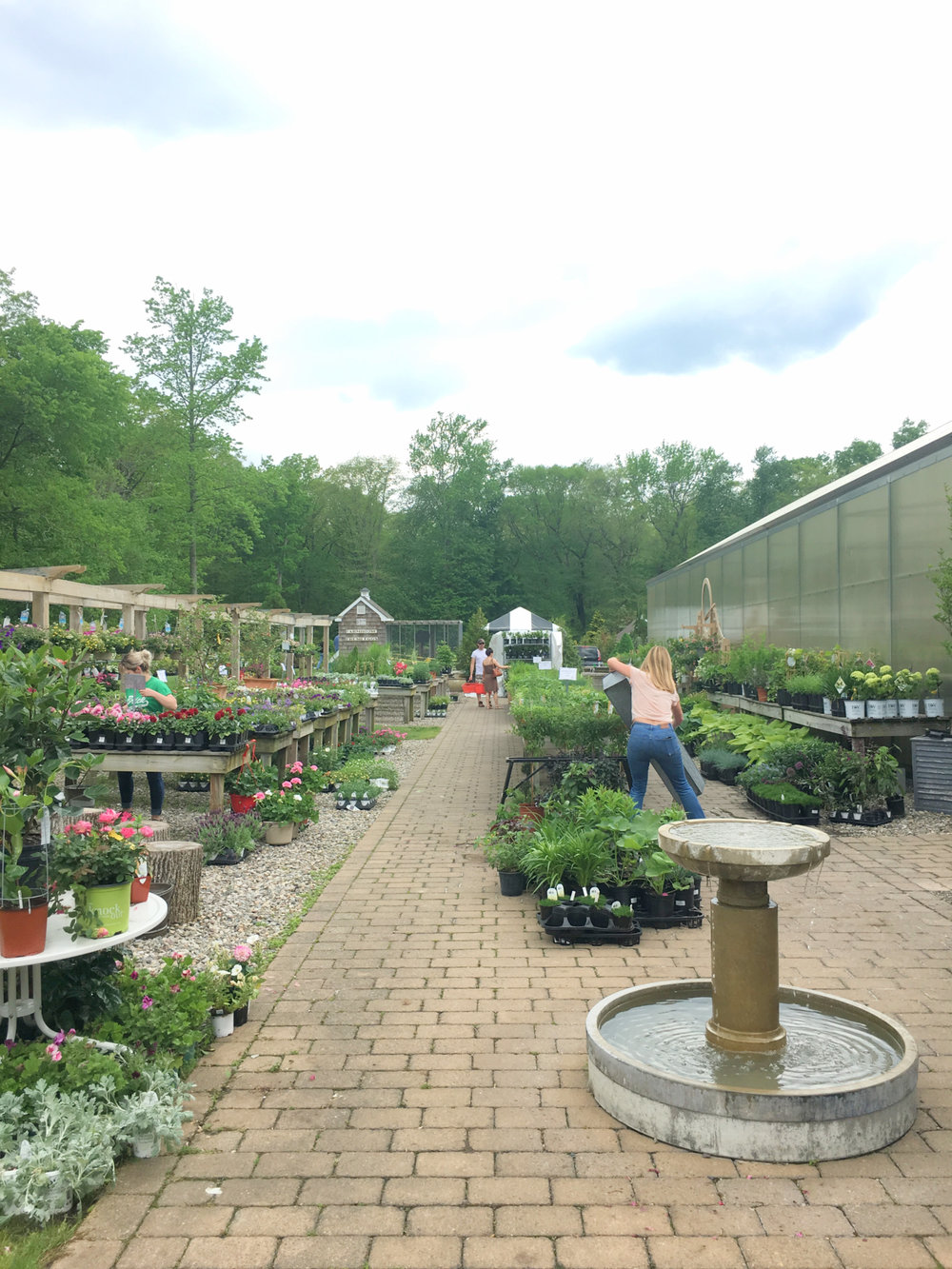 A Visit to the Herbary at Bear Creek - wear she blossoms