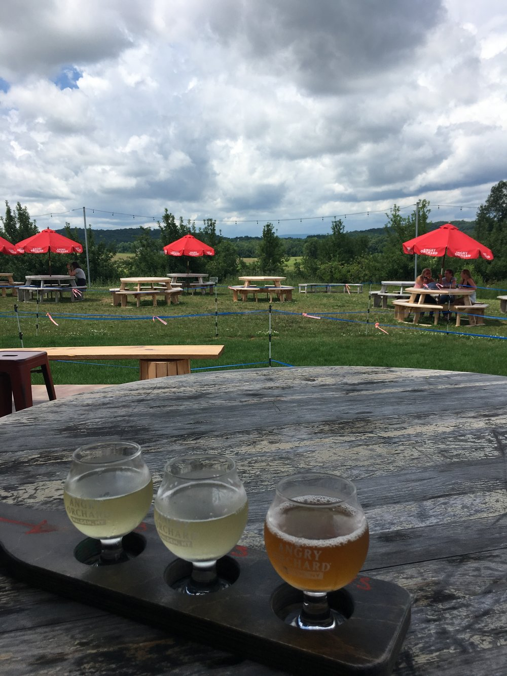 Angry Orchard Cider House - What to See, Do, and Eat in Hudson, NY