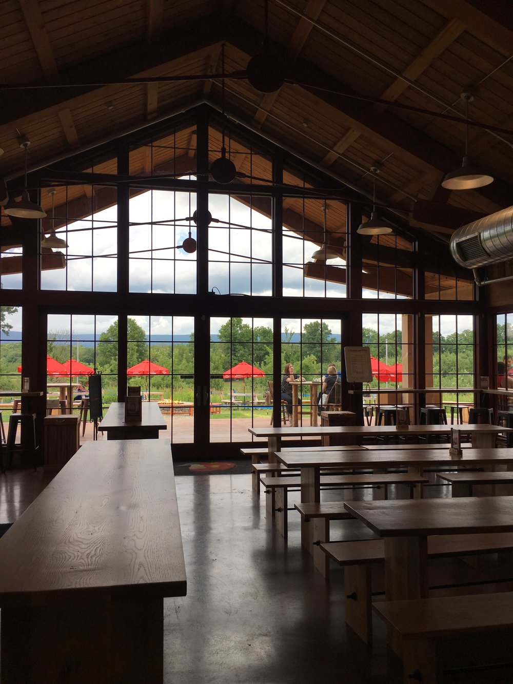 Angry Orchard - What to See, Do, and Eat in Hudson, NY - wear she blossoms