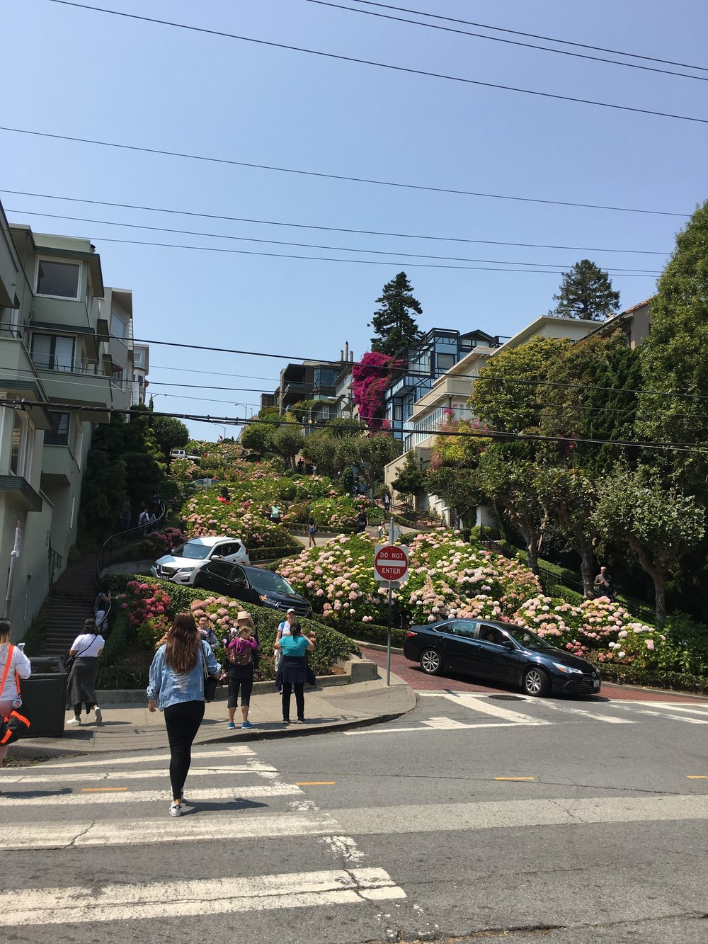 The Quick and Cheap Guide to Visiting San Francisco in Three Days - Lombard Street