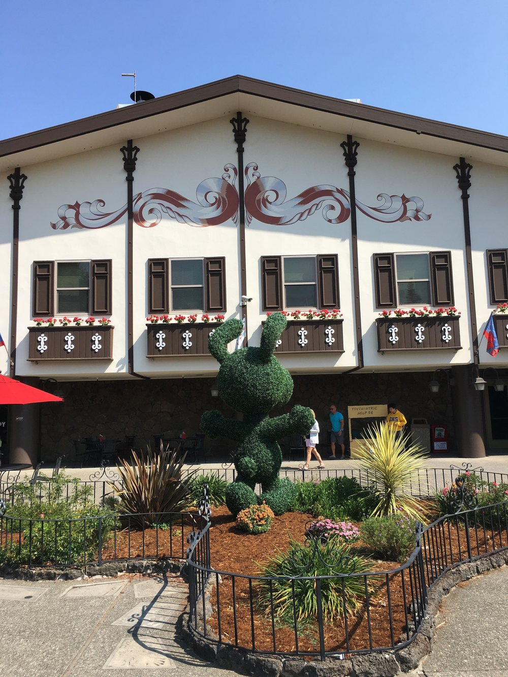 Twenty Four Hours in California Wine Country - Snoopy's Home Ice
