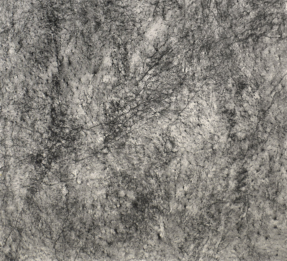 Jill O'Bryan,  nm.8.06  (detail), 2006, graphite on paper, 138 x 80 inches.