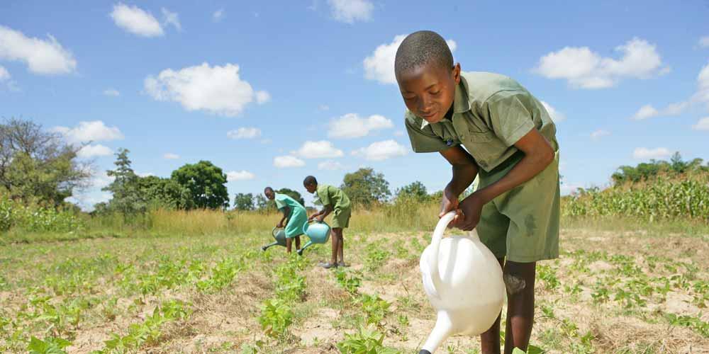 Children & Climate Change