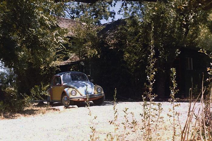 Bug_ranch.jpg