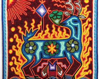 The Food of the Blue Deer - Peyote Cactus - is sacred to the Huichol people.