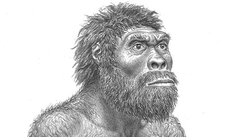 Homo_erectus.jpg