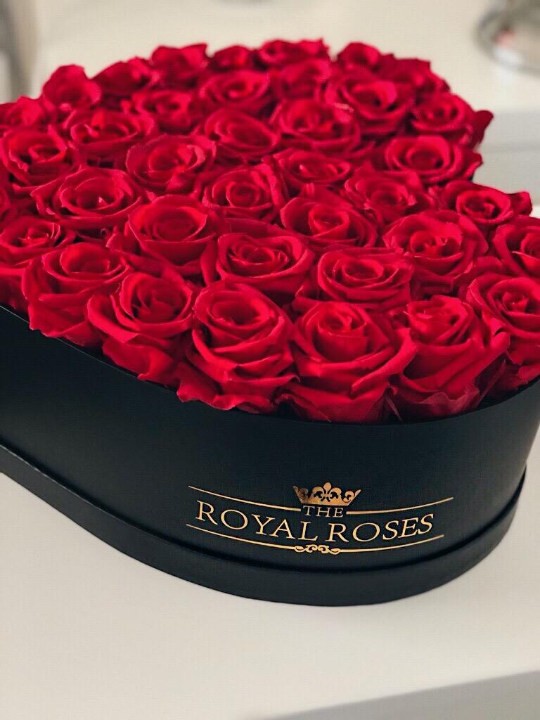Valentine's gift '18