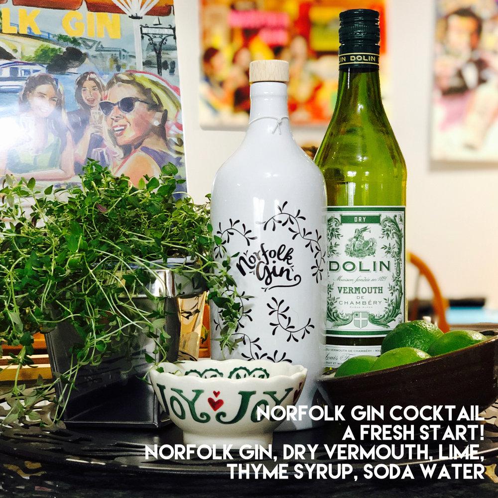 Norfolk Gin We Got This Sometimes Erica Davies Anna Newton.jpeg