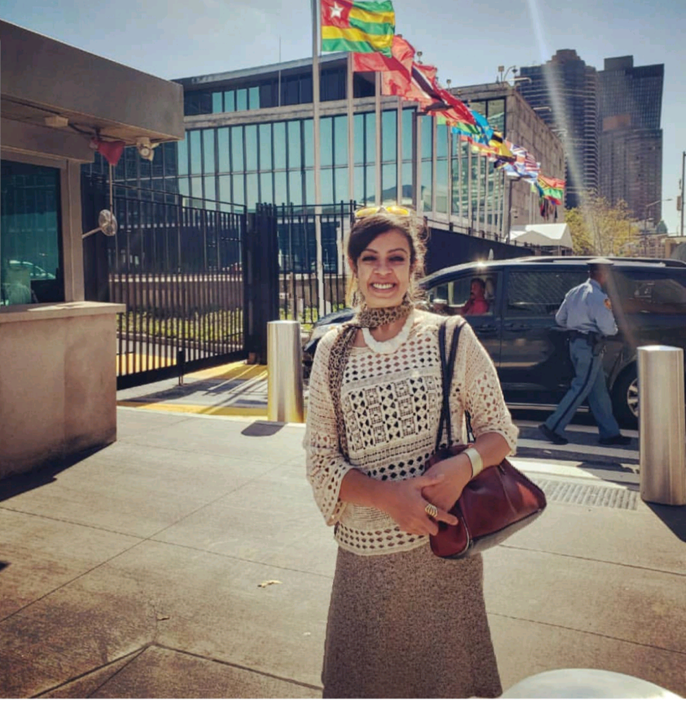 AT THE UNITED NATIONS, NEW YORK