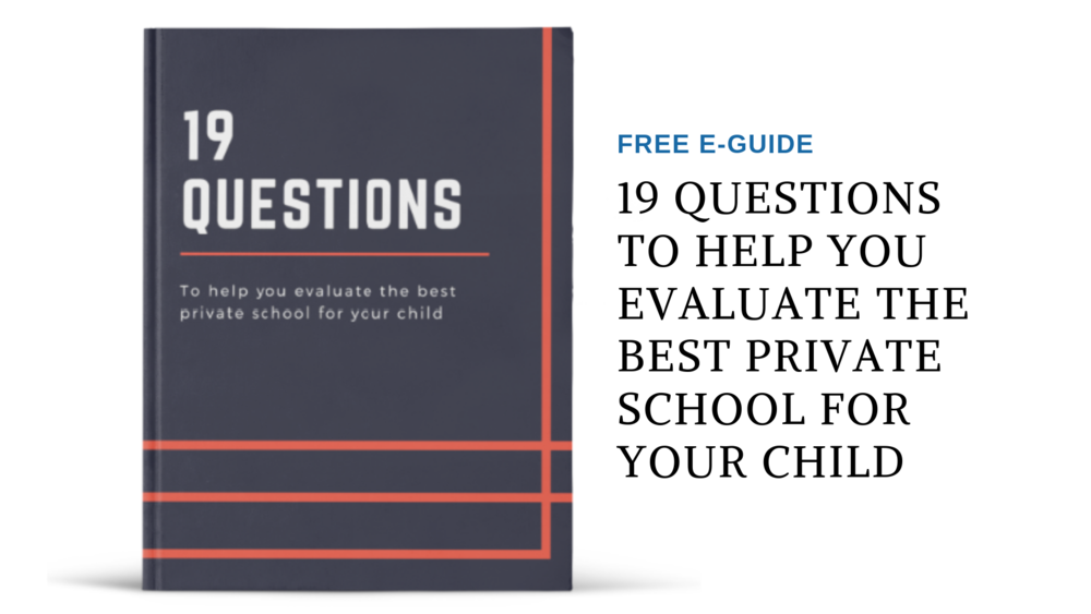 FREE E-GUIDE 19 Qs.png