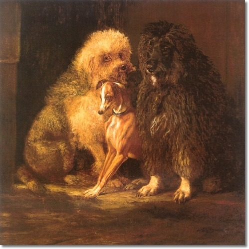 A sweet portrayal of two Poodles with an Italian Greyhound, 1870.