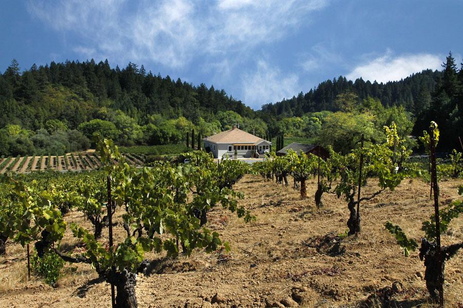 Arista Winery & Vineyards, Sonoma California