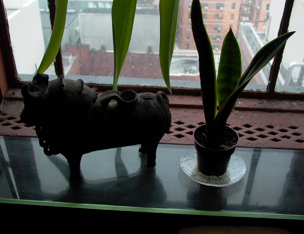 Bull and Plant