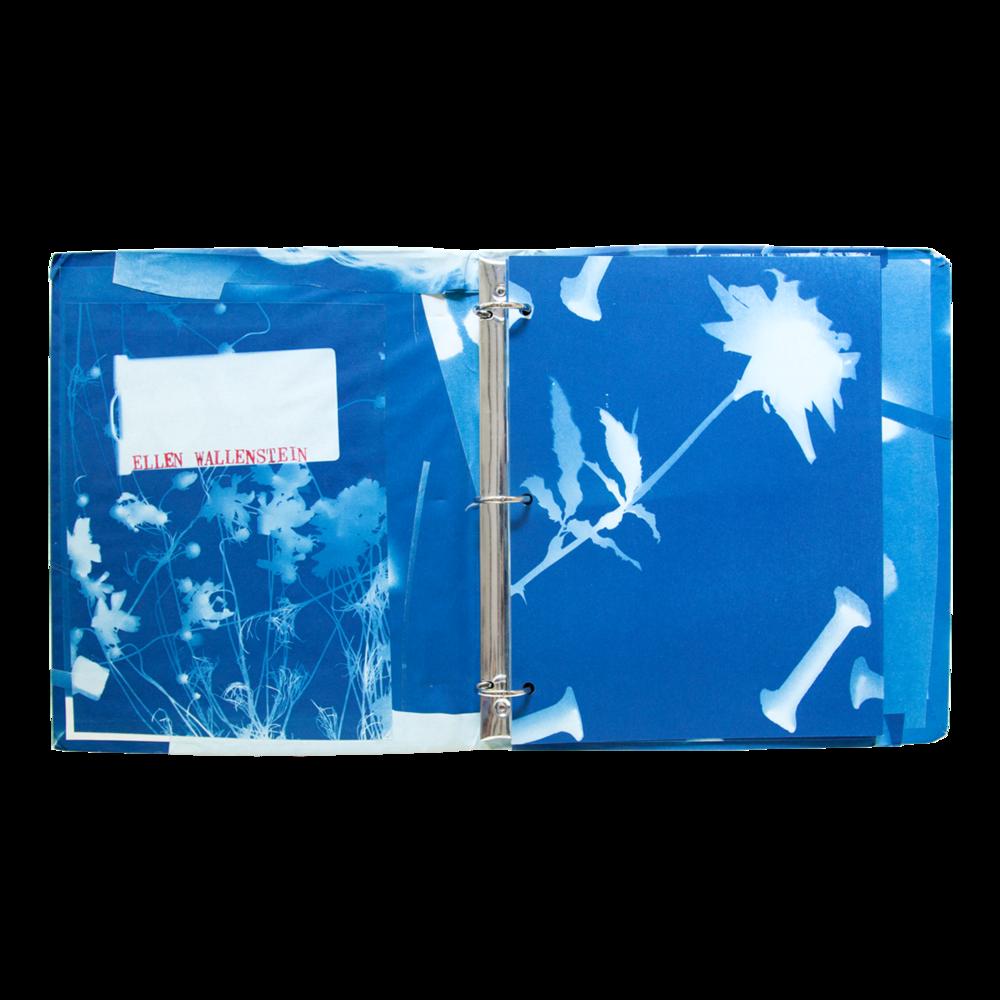 Blue Prints [1985]