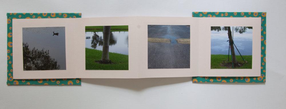 105_Florida (2014)_.jpg