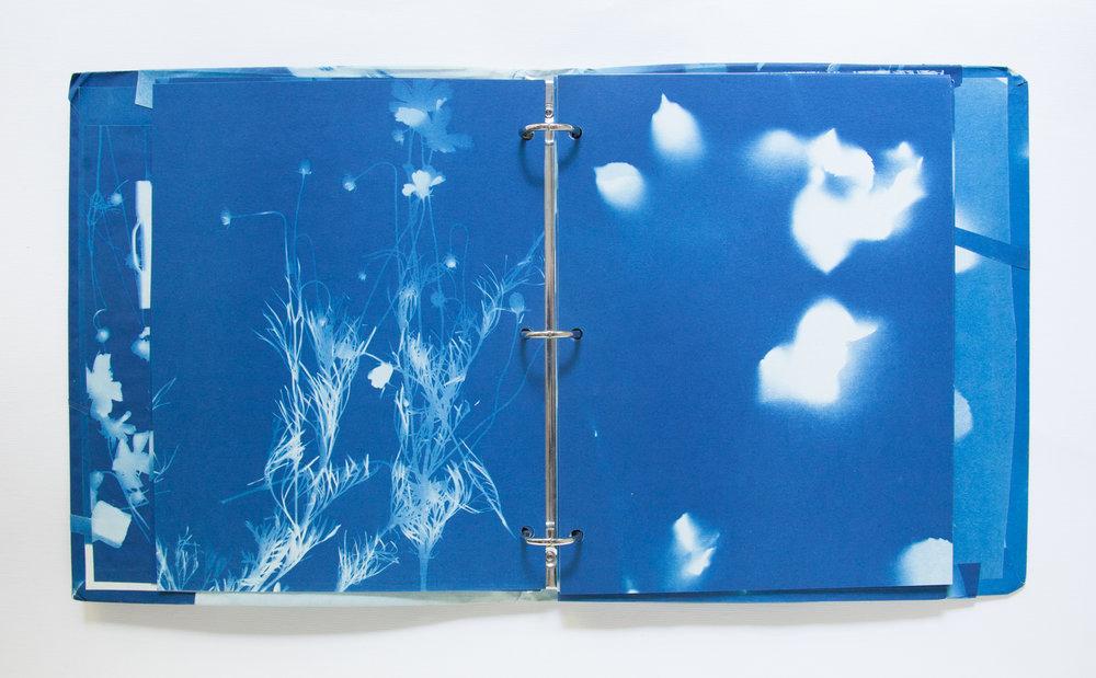 220_Blue Prints (1985)_.jpg