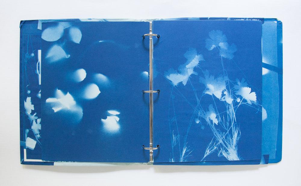 221_Blue Prints (1985)_.jpg