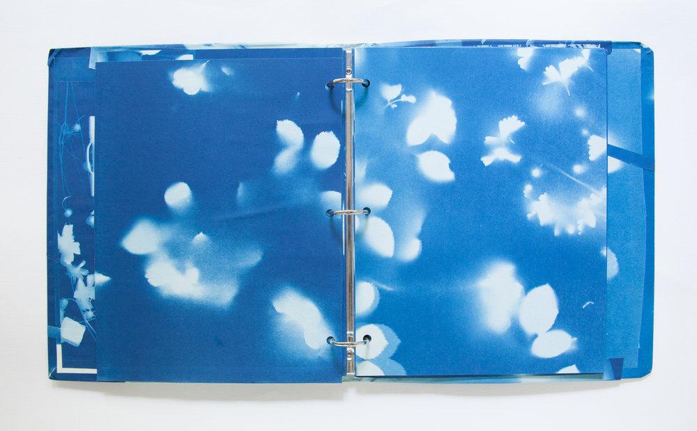 224_Blue Prints (1985)_.jpg