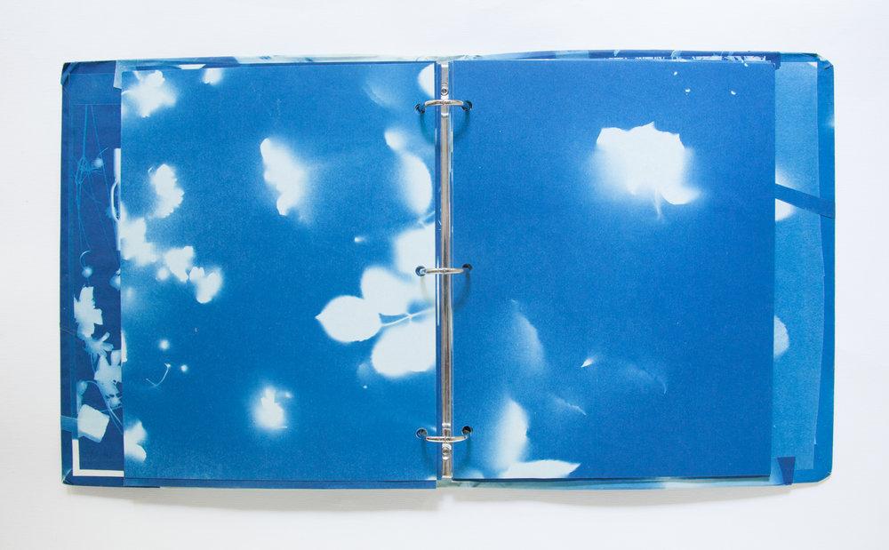 225_Blue Prints (1985)_.jpg