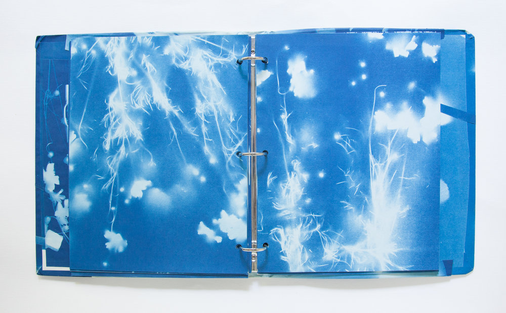 227_Blue Prints (1985)_.jpg