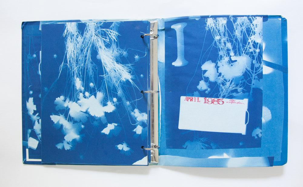 231_Blue Prints (1985)_.jpg
