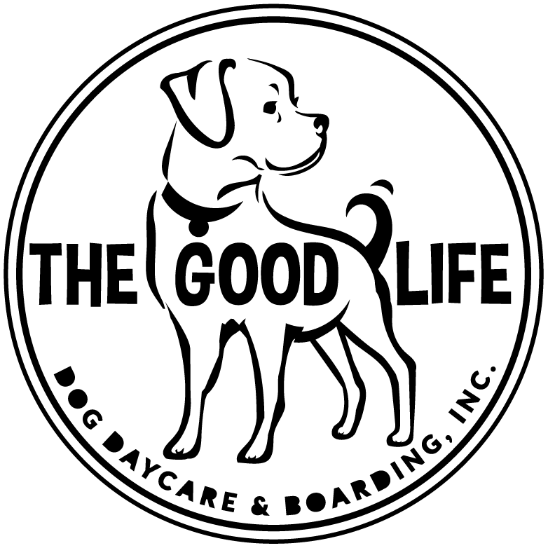 The Good Life Dog Daycare & Boarding