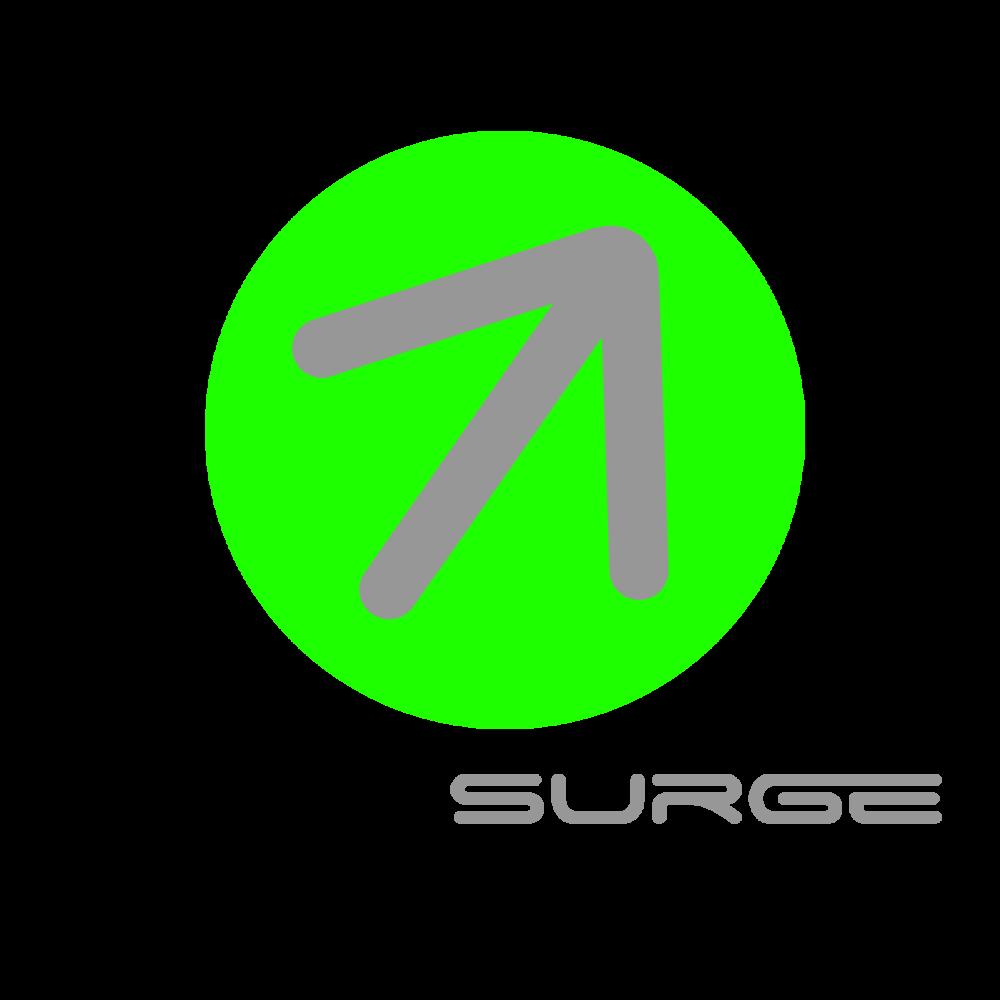 instasurge-logo-text-under.png