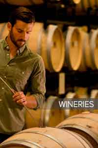 Wineries Get Instagram Followers