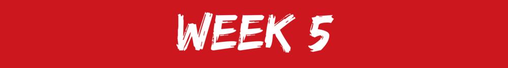 LCA4R week 5.png