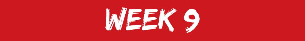 LCA4R week 9.png