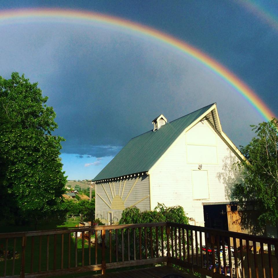 sunshine ranch rainbow.jpg