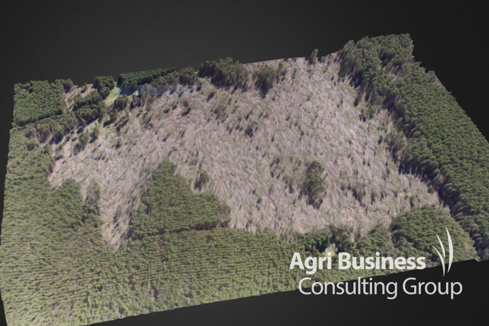 ABCG's 3-D drone imagery used to identify a forestry wind throw loss - NSW.