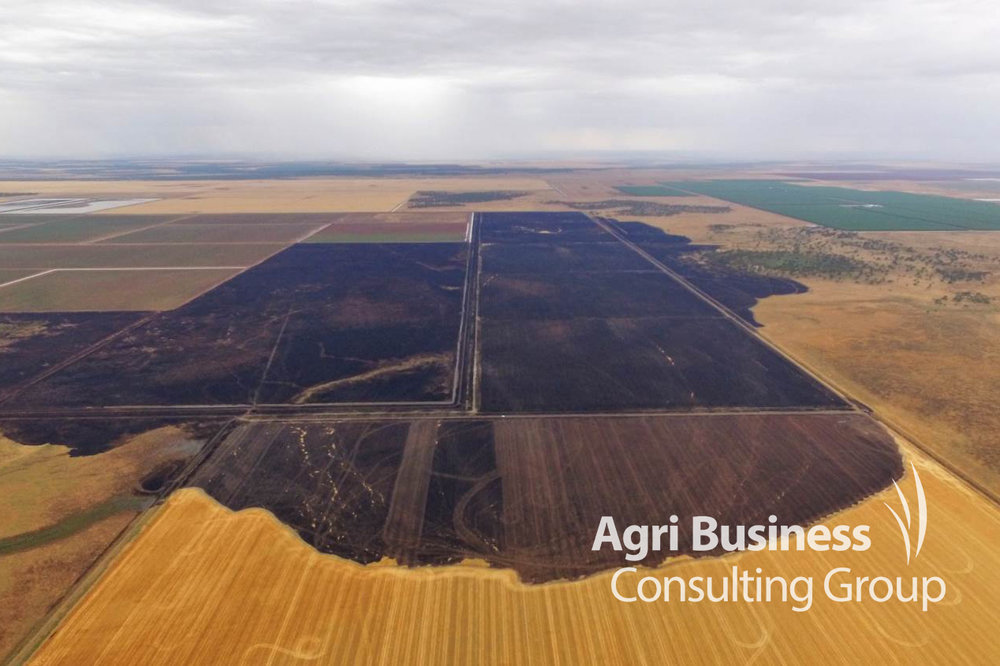 ABCG drone image of fire damage in cereal stubble.