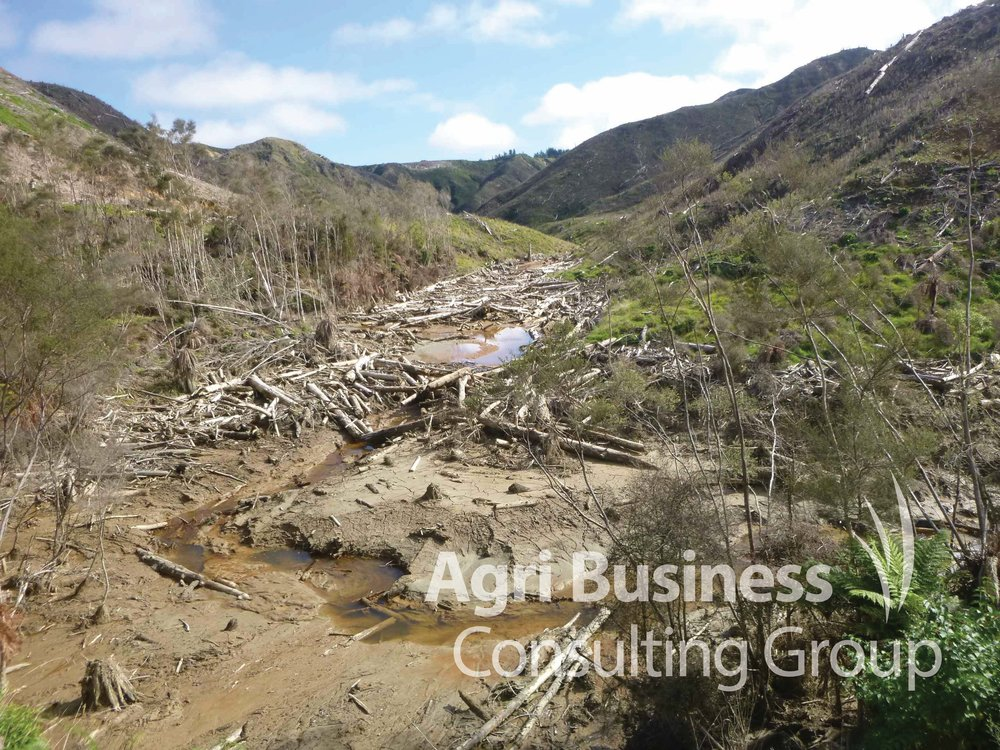 Wind storm and land slip damage on a forest plantation, New Zealand.