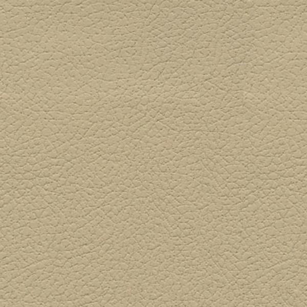 Desert Clay