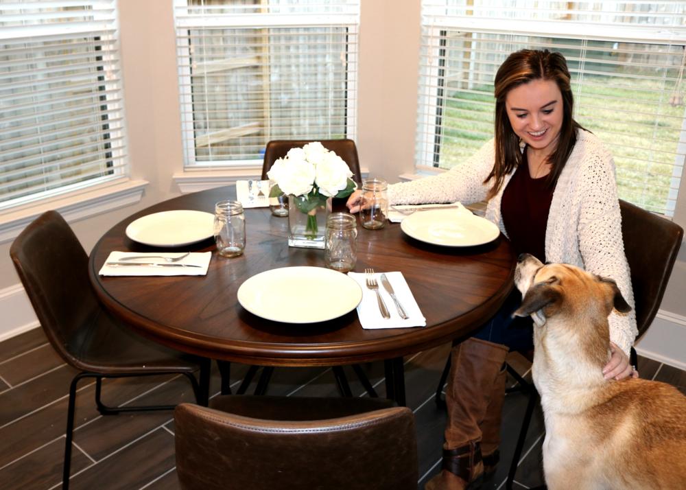 Williston Forge Josheph Dining Table ,  Joseph Upholstered Dining Chair   (adorable pup not included :P)