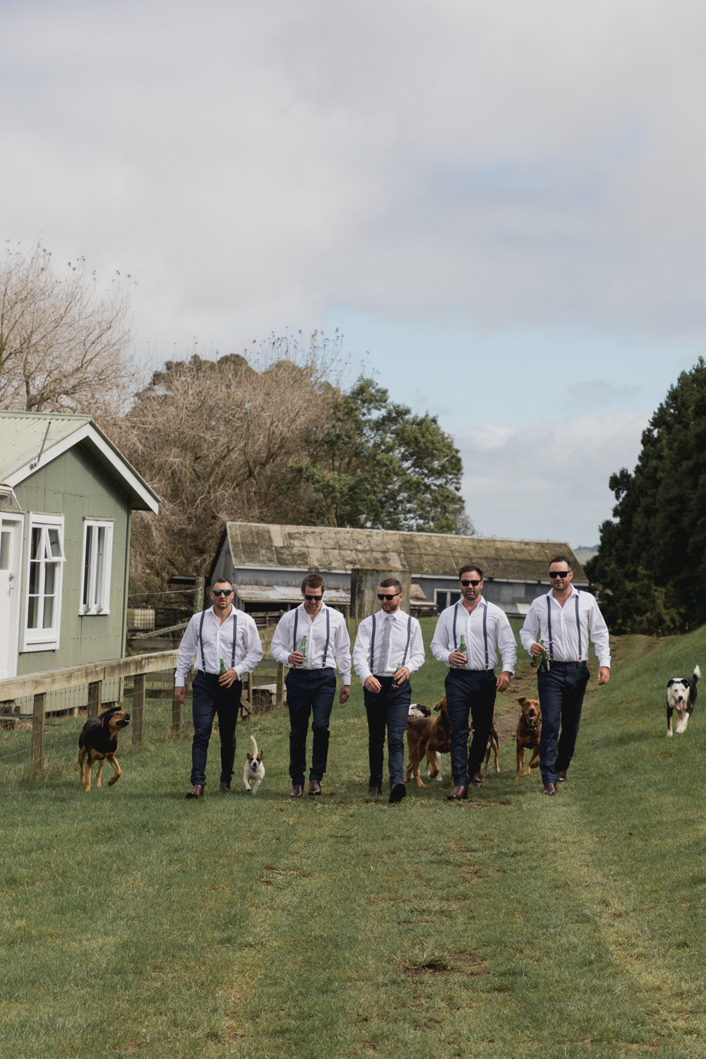 wedding-at-the-red-barn-new-zealand-wedding-photographer-groom-walking-withdogs-and-boys.jpg