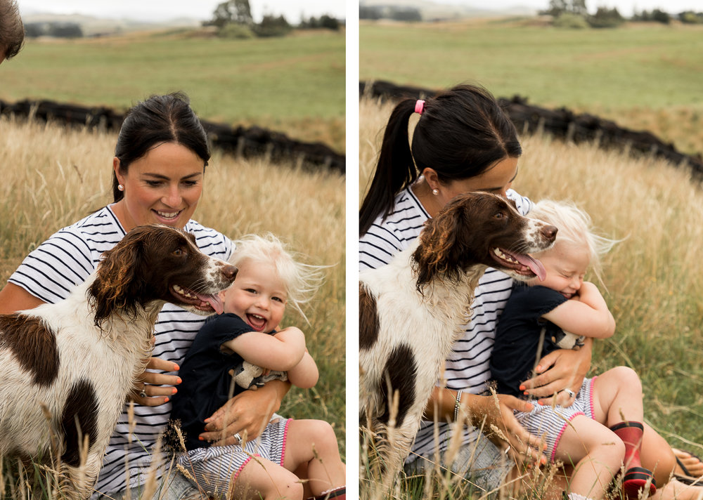 hawkes bay farming kids playing with dog