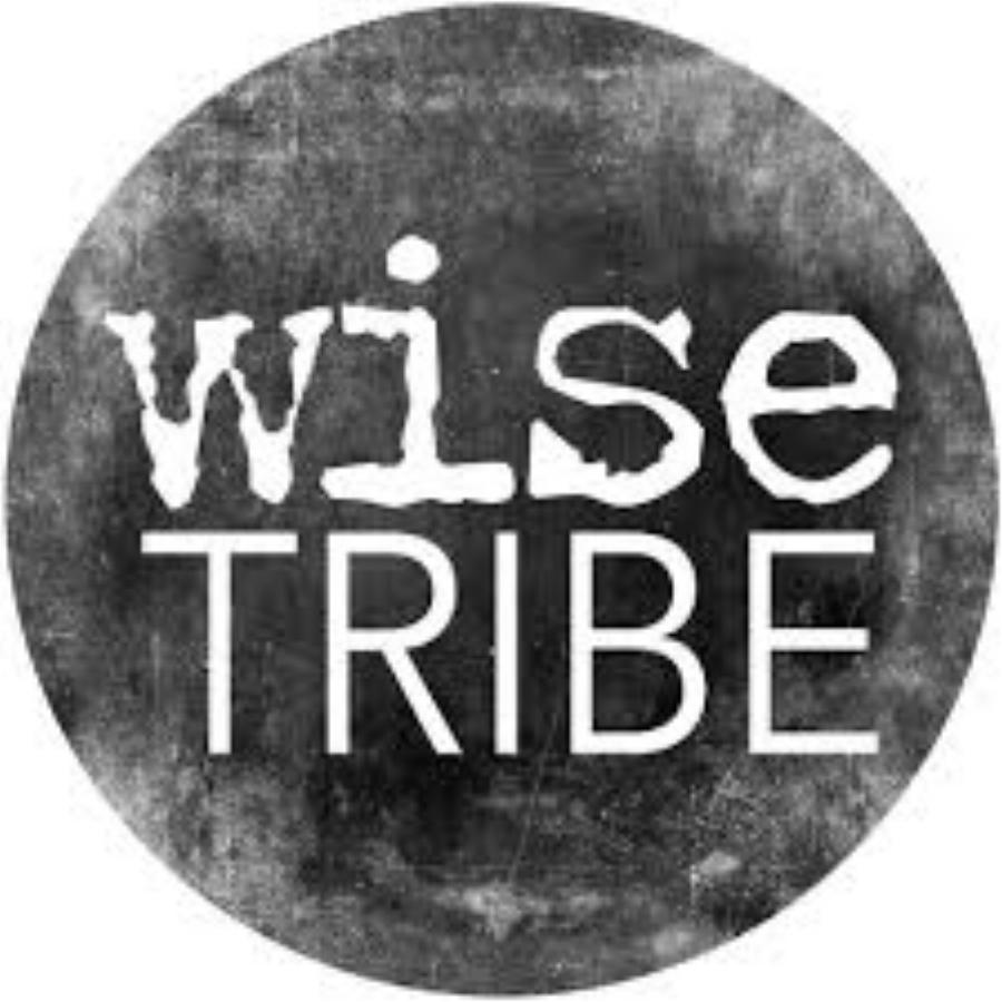 Wisetribe logo.jpeg