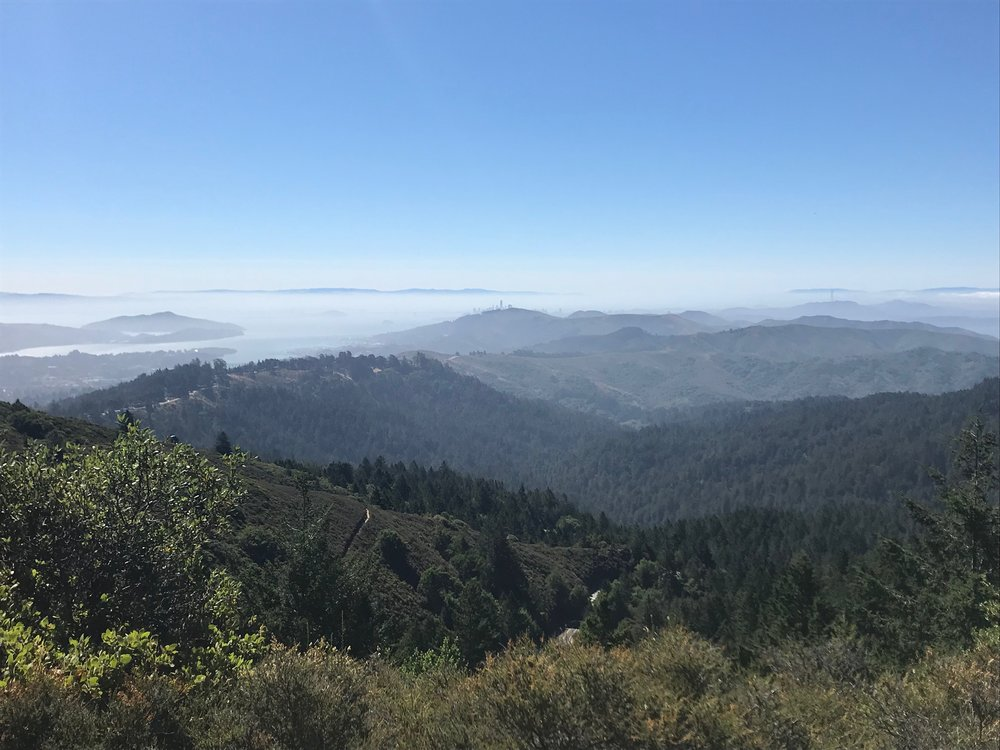 The view from Mt. Tam this past weekend