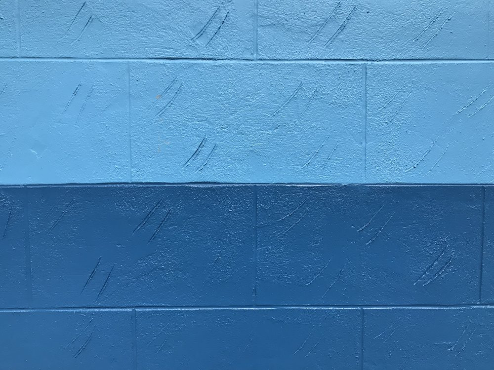 A blue wall in the neighborhood, from my walk the other day