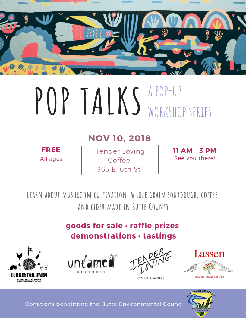 pop talks flyer