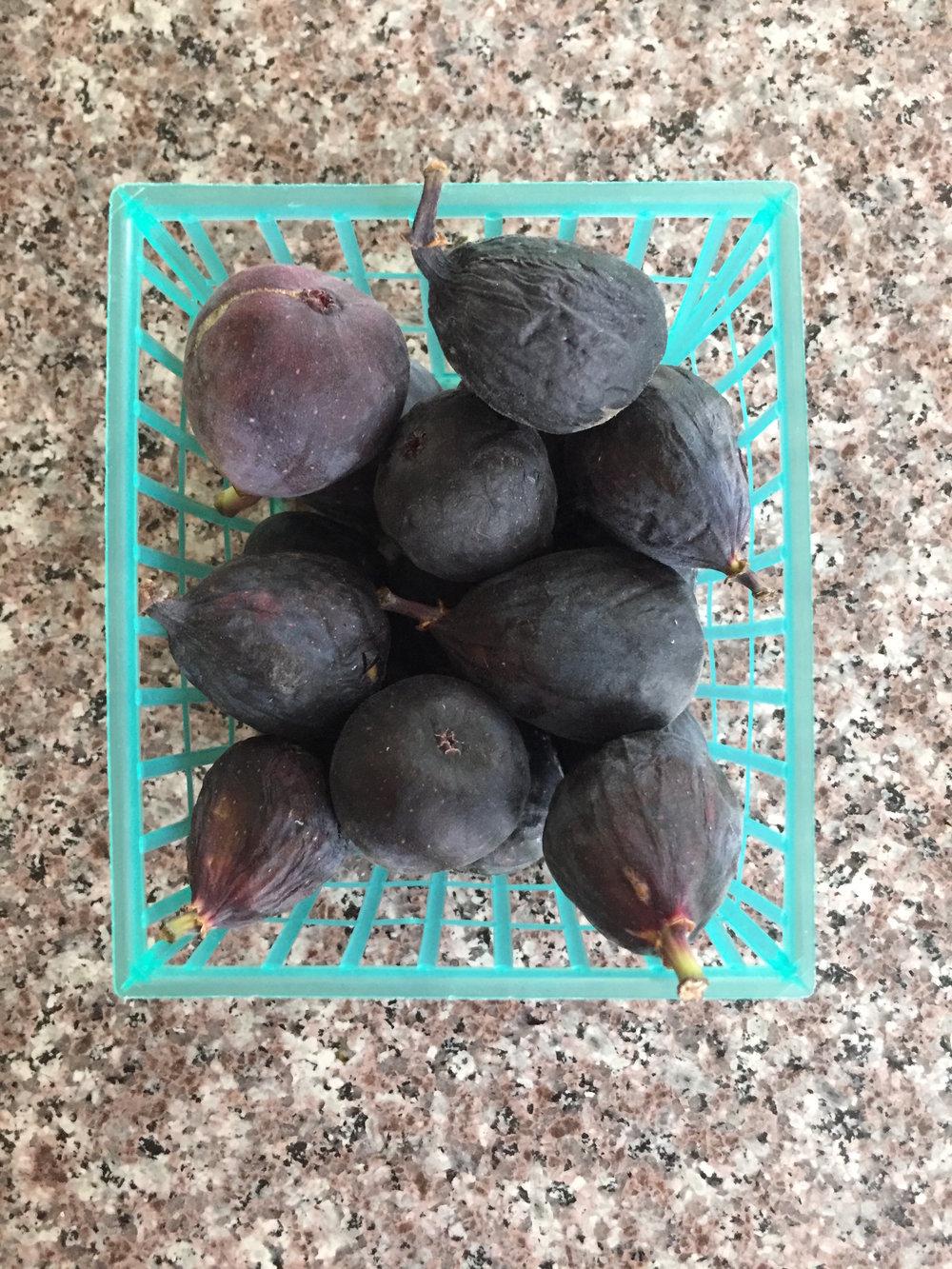 fresh-figs.JPG